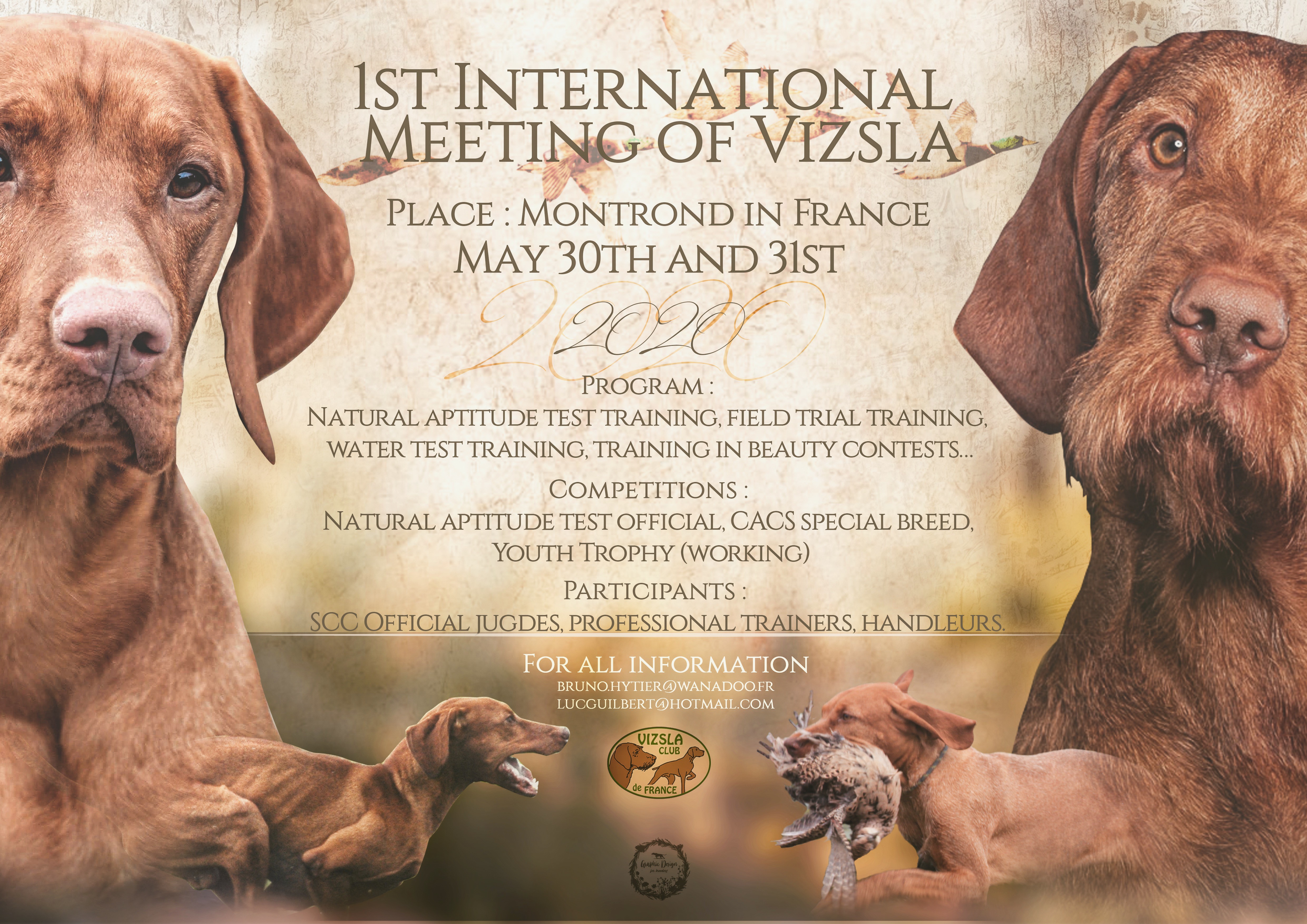 1st int meeting of vizsla France